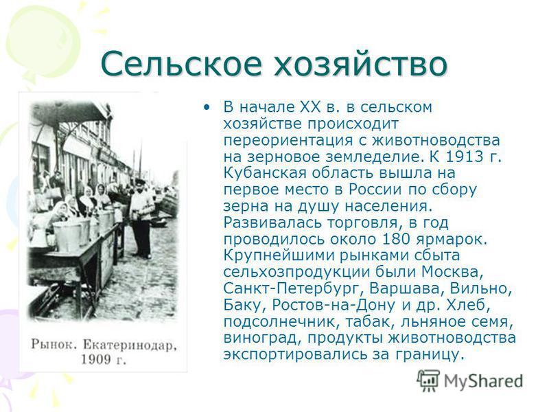 Сельское хозяйство В начале XX в. в сельском хозяйстве происходит переориентация с животноводства на зерновое земледелие. К 1913 г. Кубанская область вышла на первое место в России по сбору зерна на душу населения. Развивалась торговля, в год проводи