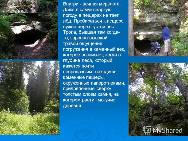 Внутри - вечная мерзлота. Даже в самую жаркую погоду в пещерах не тает лёд. Пробираться к пещере нужно через густой лес. Тропа, бывшая там когда- то, заросла высокой травой.ощущение погружения в каменный век, которое возникает, когда в глубине леса,