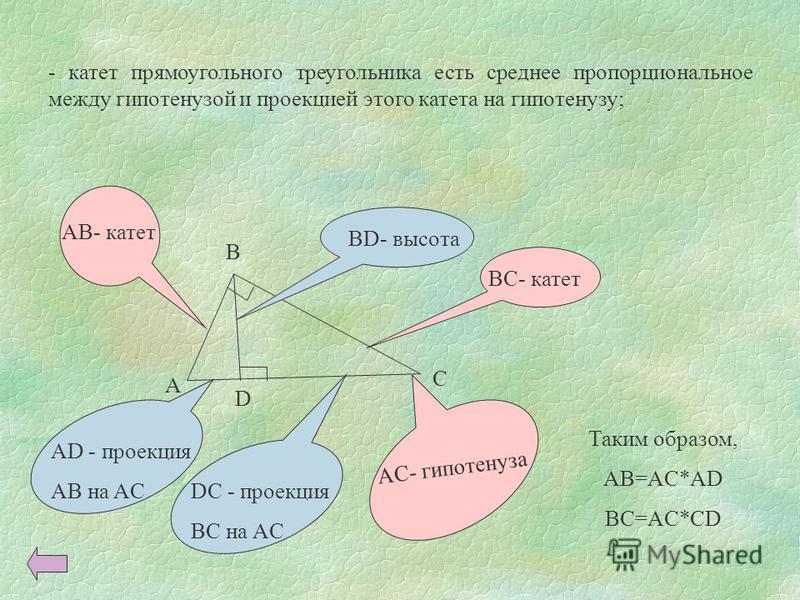 - катет прямоугольного треугольника есть среднее пропорциональное между гипотенузой и проекцией этого катета на гипотенузу; A B C D BD- высота AC- гипотенуза AD - проекция AB на AC DC - проекция BC на AC AB- катет BC- катет Таким образом, AB=AC*AD BC