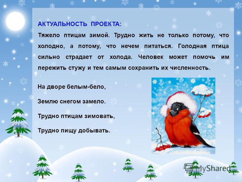 На дворе белым-бело, Землю снегом замело. Трудно птицам зимовать, Трудно пищу добывать. АКТУАЛЬНОСТЬ ПРОЕКТА: Тяжело птицам зимой. Трудно жить не только потому, что холодно, а потому, что нечем питаться. Голодная птица сильно страдает от холода. Чело