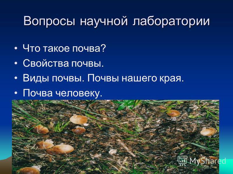 Что такое почва? Свойства почвы. Виды почвы. Почвы нашего края. Почва человеку. Вопросы научной лаборатории