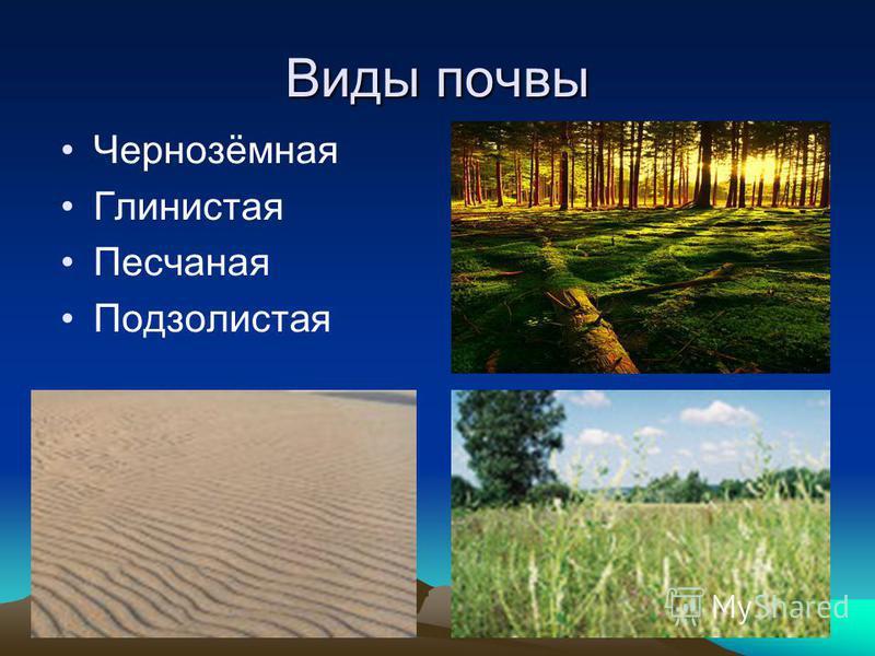 Виды почвы Чернозёмная Глинистая Песчаная Подзолистая