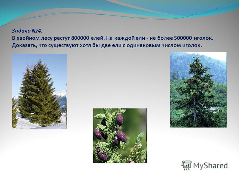 Задача 4. В хвойном лесу растут 800000 елей. На каждой ели - не более 500000 иголок. Доказать, что существуют хотя бы две ели с одинаковым числом иголок.