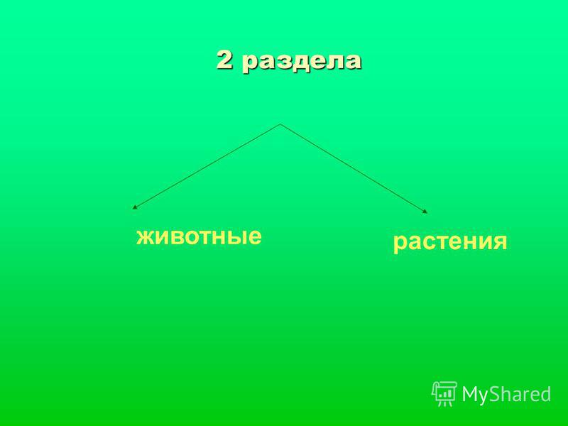 2 раздела животные растения