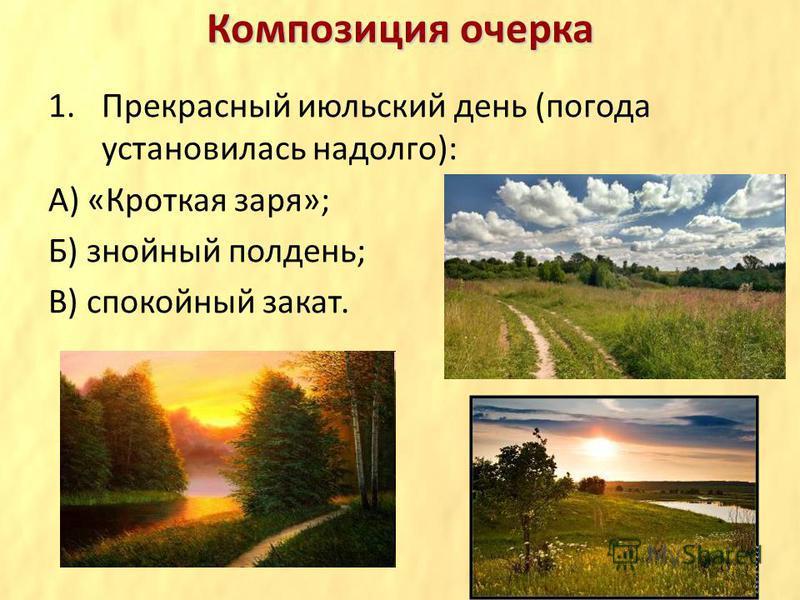 Композиция очерка 1. Прекрасный июльский день (погода установилась надолго): А) «Кроткая заря»; Б) знойный полдень; В) спокойный закат.