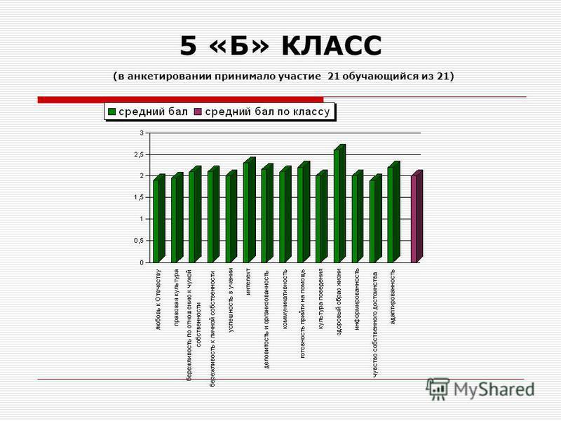 5 «Б» КЛАСС (в анкетировании принимало участие 21 обучающийся из 21)