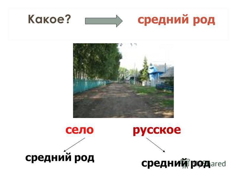 Какое? средний род село средний род русское