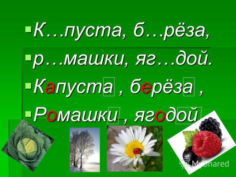 К…пуста, б…рёза, К…пуста, б…рёза, р…машки, яг…той. р…машки, яг…той. Капуста, берёза, Капуста, берёза, Ромашки, яготой. Ромашки, яготой.