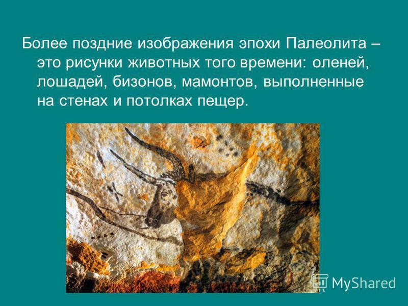 Более поздние изображения эпохи Палеолита – это рисунки животных того времени: оленей, лошадей, бизонов, мамонтов, выполненные на стенах и потолках пещер.