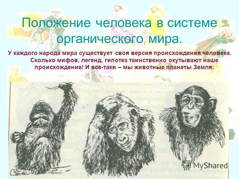 Положение человека в системе органического мира. У каждого народа мира существует своя версия происхождения человека. Сколько мифов, легенд, гипотез таинственно окутывают наше происхождение! И все-таки – мы животные планеты Земля.