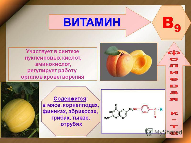 ВИТАМИН B9B9 Участвует в синтезе нуклеиновых кислот, аминокислот, регулирует работу органов кроветворения Содержится: в мясе, корнеплодах, финиках, абрикосах, грибах, тыкве, отрубях