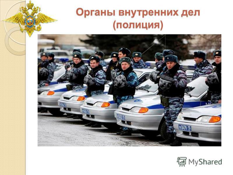Органы внутренних дел (полиция)
