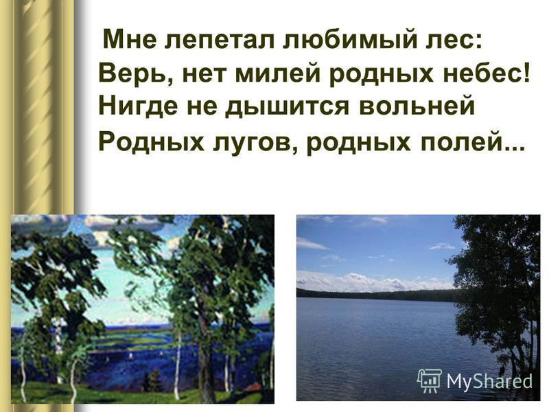 Мне лепетал любимый лес: Верь, нет милей родных небес! Нигде не дышится вольней Родных лугов, родных полей...