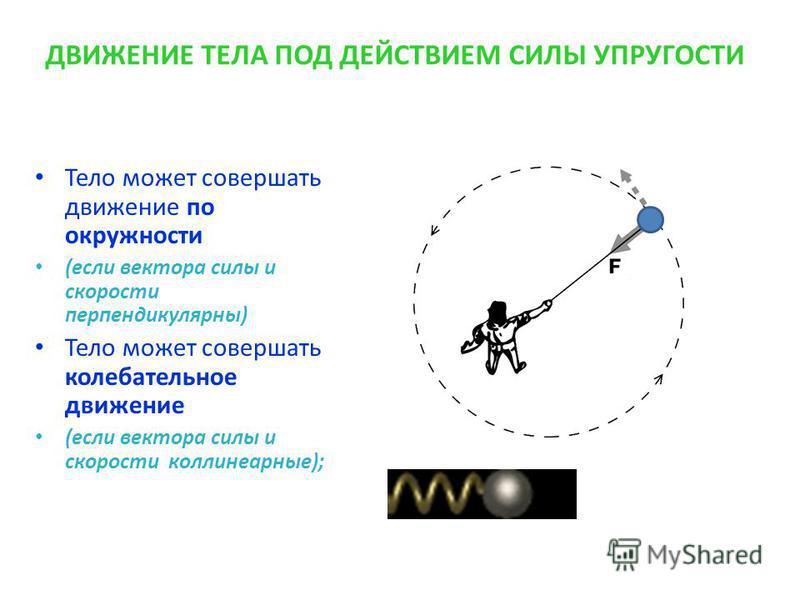 ДВИЖЕНИЕ ТЕЛА ПОД ДЕЙСТВИЕМ СИЛЫ УПРУГОСТИ Тело может совершать движение по окружности (если вектора силы и скорости перпендикулярны) Тело может совершать колебательное движение (если вектора силы и скорости коллинеарные);