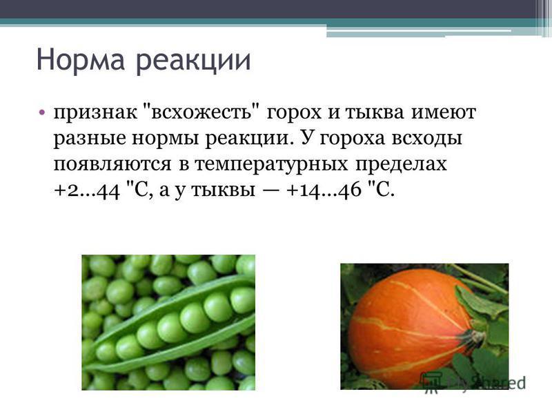 Норма реакции признак всхожесть горох и тыква имеют разные нормы реакции. У гороха всходы появляются в температурных пределах +2...44 С, а у тыквы +14...46 С.