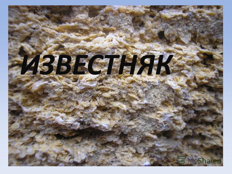 Полезные ископаемые Московской области ИЗВЕСТНЯК