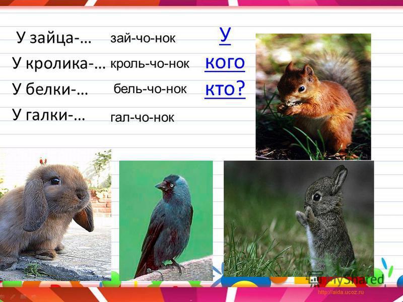 У кого кто? У зайца-… У кролика-… У белки-… У галки-… зай-чо-нок кроль-чо-нок бель-чо-нок гал-чо-нок