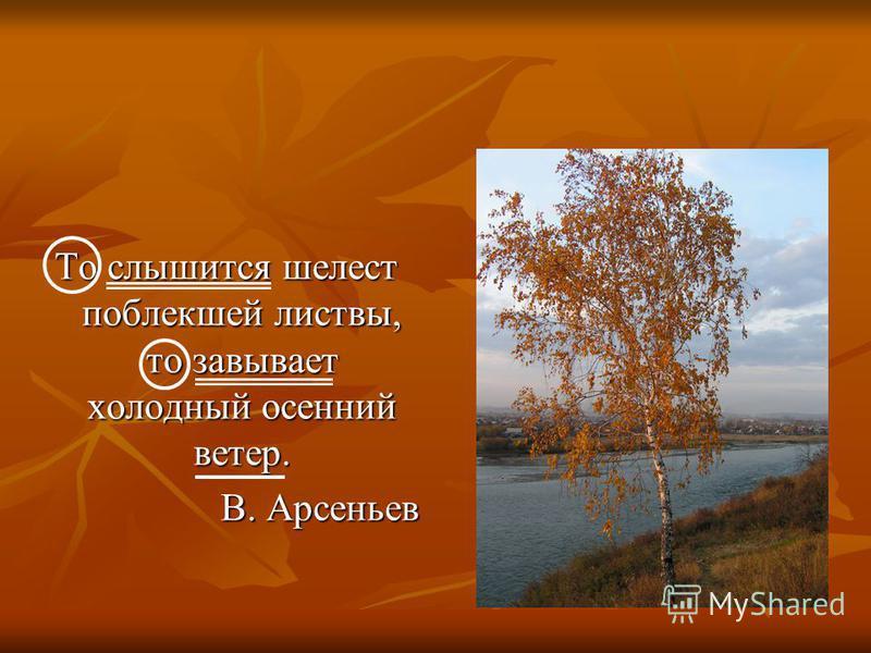 То слышится шелест поооблекшей листвы, то завывает холодный осенний ветер. В. Арсеньев