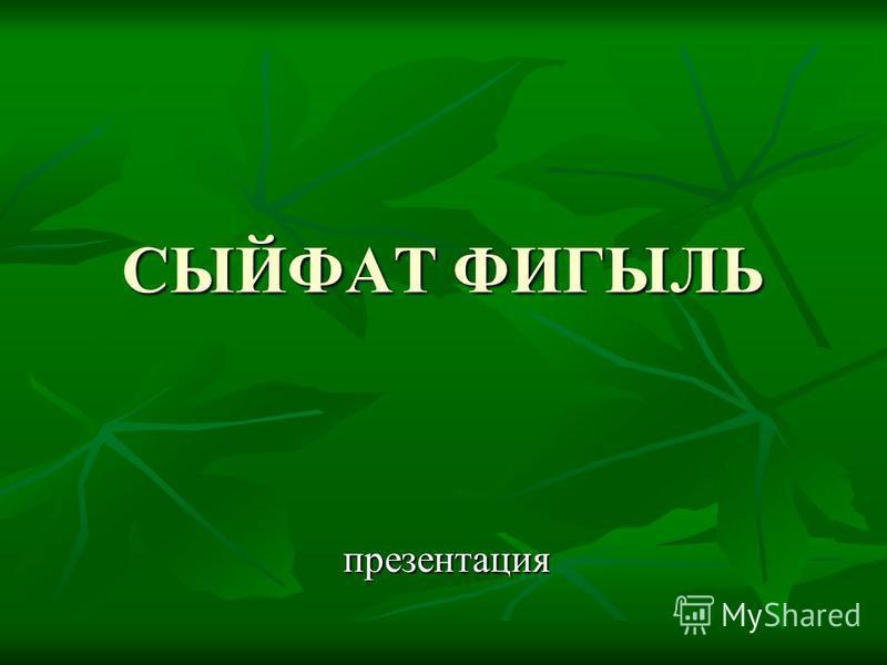 СЫЙФАТ ФИГЫЛЬ презентация