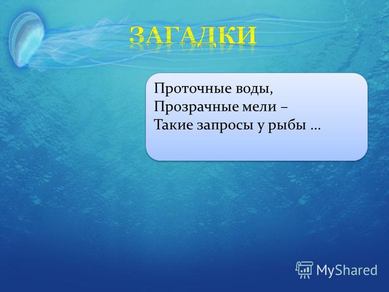 Проточные воды, Прозрачные мели – Такие запросы у рыбы...