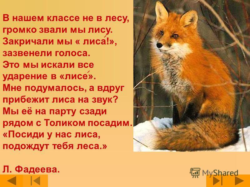 В нашем классе не в лесу, громко звали мы лису. Закричали мы « лиса!», зазвенели голоса. Это мы искали все ударение в «лисе». Мне подумалось, а вдруг прибежит лиса на звук? Мы её на парту сзади рядом с Толиком посадим. «Посиди у нас лиса, подождут те