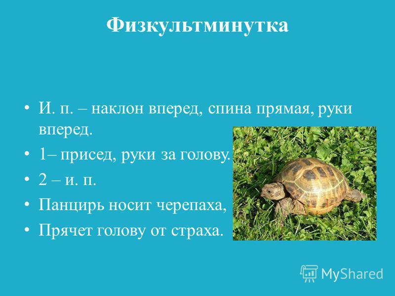 Физкультминутка И. п. – наклон вперед, спина прямая, руки вперед. 1– присед, руки за голову. 2 – и. п. Панцирь носит черепаха, Прячет голову от страха.
