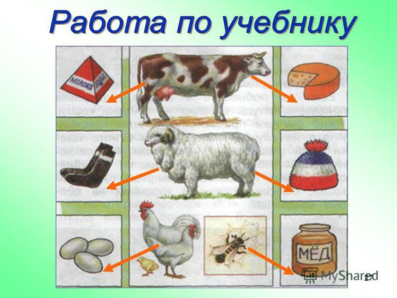 Узнайте из учебника с. 67 Что человек получает от домашних животных?