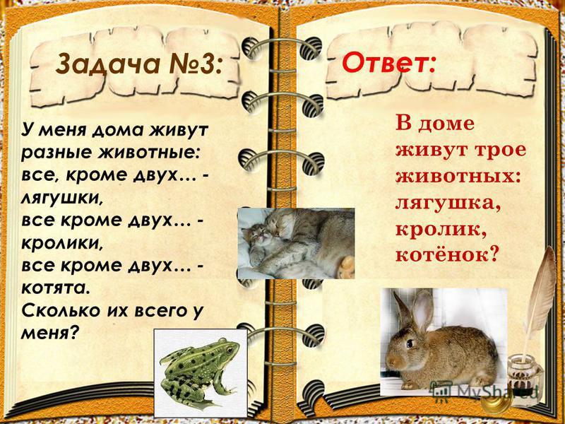 Задача 3: Ответ: У меня дома живут разные животные: все, кроме двух… - лягушки, все кроме двух… - кролики, все кроме двух… - котята. Сколько их всего у меня? В доме живут трое животных: лягушка, кролик, котёнок?