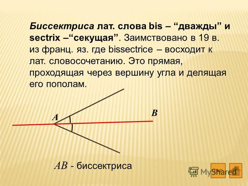 Биссектриса лат. слова bis – дважды и sectrix –секущая. Заимствовано в 19 в. из франц. яз. где bissectrice – восходит к лат. словосочетанию. Это прямая, проходящая через вершину угла и делящая его пополам. END A B AB - биссектриса