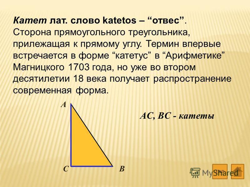 Катет лат. слово katetos – отвес. Сторона прямоугольного треугольника, прилежащая к прямому углу. Термин впервые встречается в форме катетус в Арифметике Магницкого 1703 года, но уже во втором десятилетии 18 века получает распространение современная