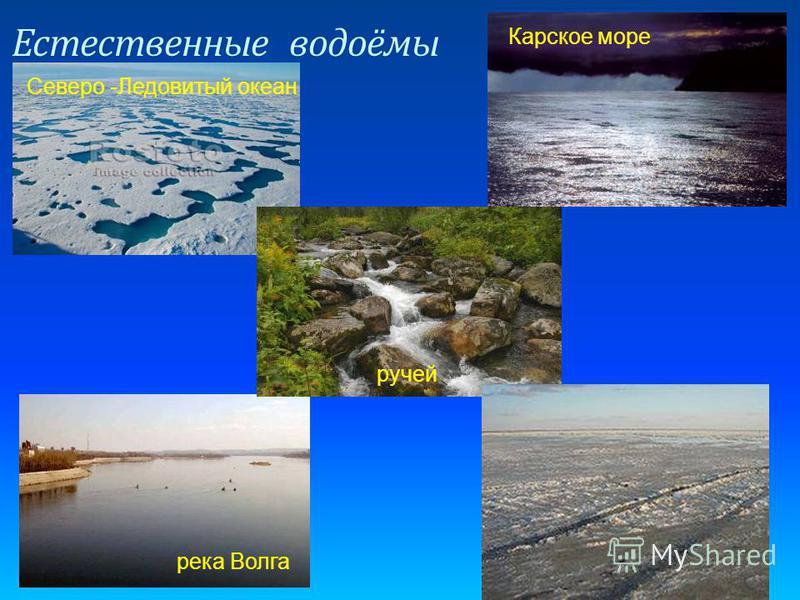 Естественные водоёмы Северо -Ледовитый океан Карское море река Волга озеро Эльтон ручей