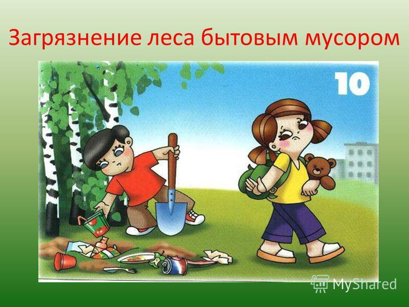 Загрязнение леса бытовым мусором