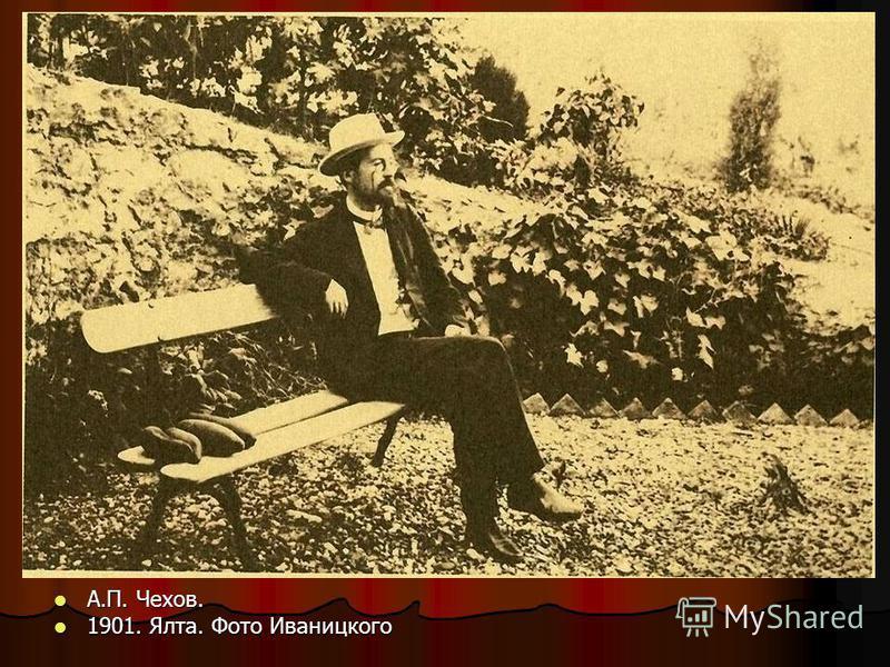 А.П. Чехов. А.П. Чехов. 1901. Ялта. Фото Иваницкого 1901. Ялта. Фото Иваницкого