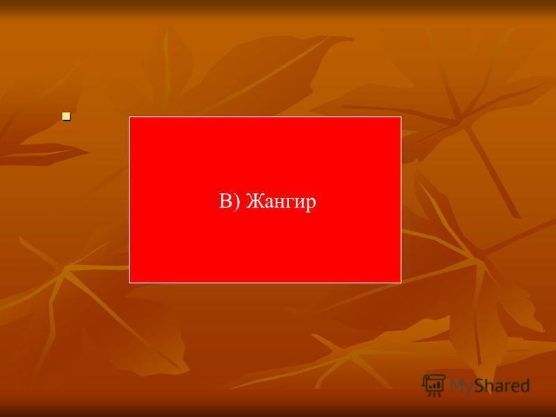 В) Жангир