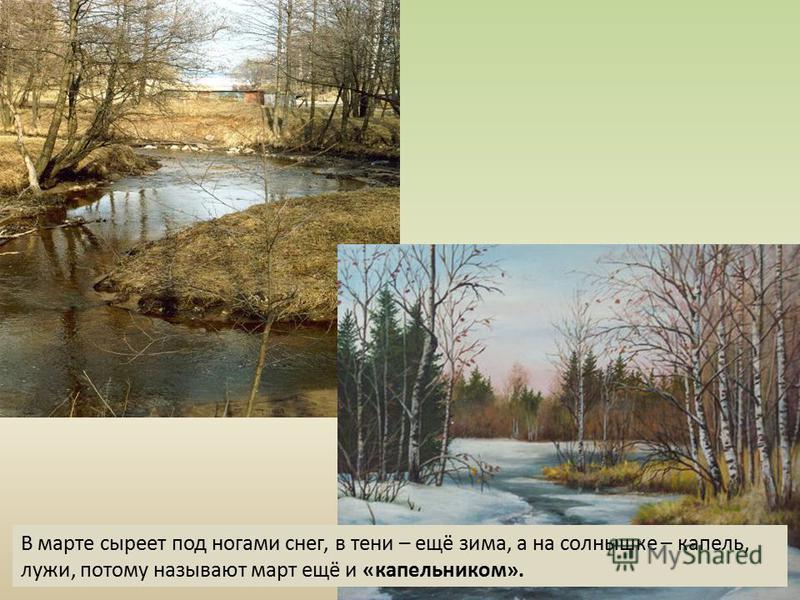 В марте сыреет под ногами снег, в тени – ещё зима, а на солнышке – капель, лужи, потому называют март ещё и «капельником».