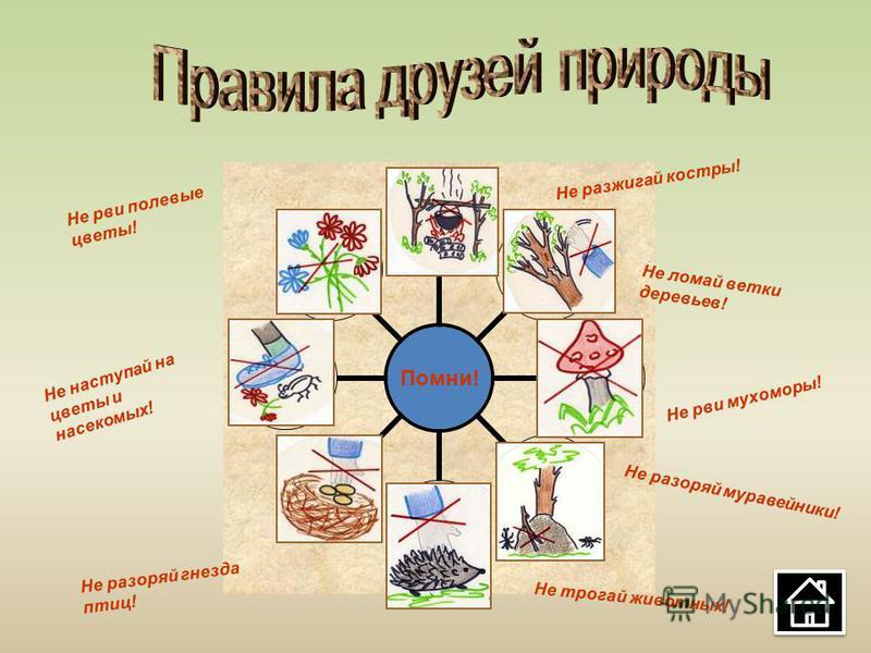 Помни! Не разжигай костры! Не ломай ветки деревьев! Не рви мухоморы! Не разоряй муравейники! Не трогай животных! Не разоряй гнезда птиц! Не наступай на цветы и насекомых! Не рви полевые цветы!