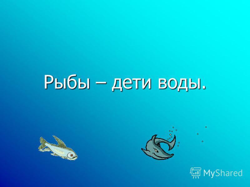 Рыбы – дети воды.