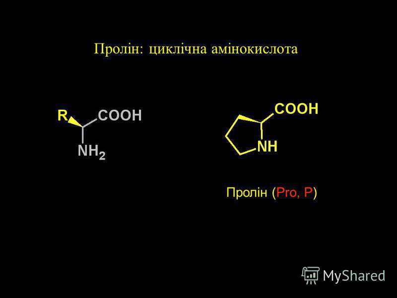 Сірковмісні амінокислоти +2H + + 2e - Дисульфідний звязок Цистеїн (Cys, C)Метіонин (Met, M) Цистін (CysCys) pK a ~8,3