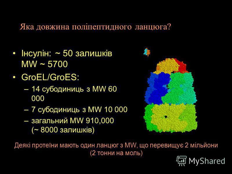 Протеїн: один або декльіка поліпептидних ланцюгів Moномерний протеїн: один поліпептидний ланцюг Більше ніж один - мультімерний протеїн: – Гомомультімер - більш ніж один ланцюг, усі з однаковою амінокислотною послідовністю –Гетеромультімер - дві або б