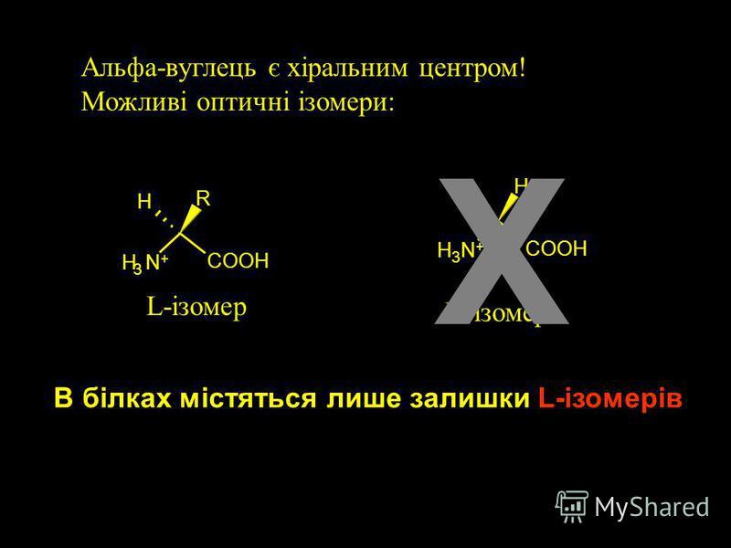 Aмінокислоти: будівельні блоки протеїнів карбоксильна група, pK a ~ 2 = NH 3 + альфа-вуглець ( C ) Боковий ланцюг (R) аміногрупа, pK a ~ 9-11