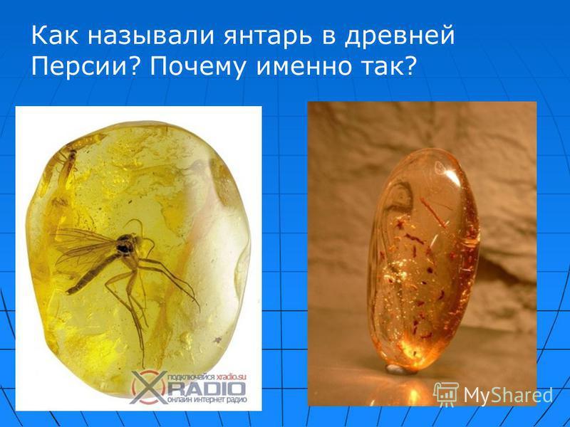 Как называли янтарь в древней Персии? Почему именно так?