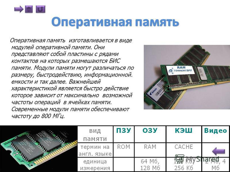 Процессор (мозг)- интегральная микросхема, которая выполняет арифметические, логические операции, управляет компьютером и его ресурсами (память и место на дисках). Аппаратно реализуется на большой интегральной схеме (БИС) представляет собой маленькую
