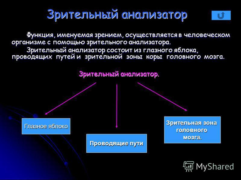 Зрительный анализатор Функция, именуемая зрением, осуществляется в человеческом организме с помощью зрительного анализатора. Функция, именуемая зрением, осуществляется в человеческом организме с помощью зрительного анализатора. Зрительный анализатор
