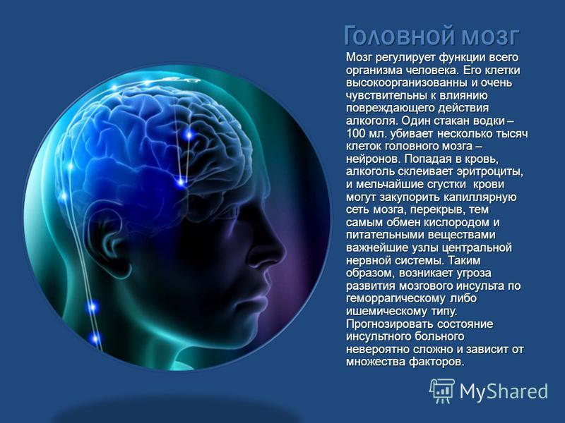 Головной мозг Мозг регулирует функции всего организма человека. Его клетки высокоорганизованны и очень чувствительны к влиянию повреждающего действия алкоголя. Один стакан водки – 100 мл. убивает несколько тысяч клеток головного мозга – нейронов. Поп