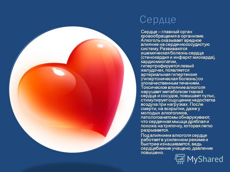 Сердце Сердце – главный орган кровообращения в организме. Алкоголь оказывает вредное влияние на сердечно сосудистую систему. Развиваются ишемическая болезнь сердца (стенокардия и инфаркт миокарда), кардиомиопатии, гипертрофируется левый желудочек, по