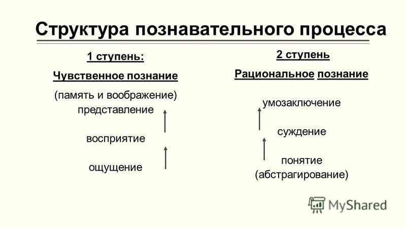 Структура познавательного процесса 1 ступень: Чувственное познание (память и воображение) представление восприятие ощущение 2 ступень Рациональное познание умозаключение суждение понятие (абстрагирование)