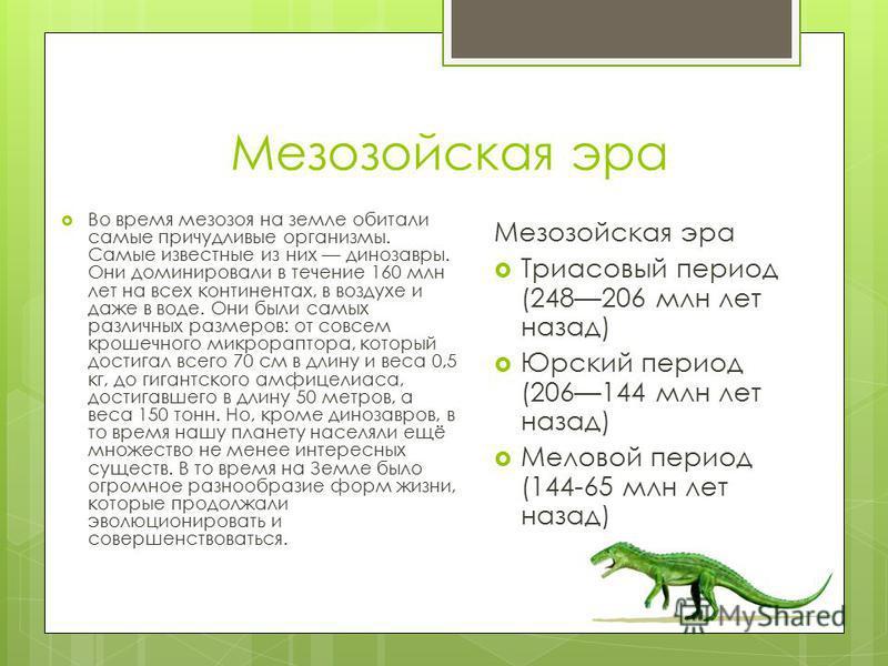 Мезозойская эра Во время мезозоя на земле обитали самые причудливые организмы. Самые известные из них динозавры. Они доминировали в течение 160 млн лет на всех континентах, в воздухе и даже в воде. Они были самых различных размеров: от совсем крошечн