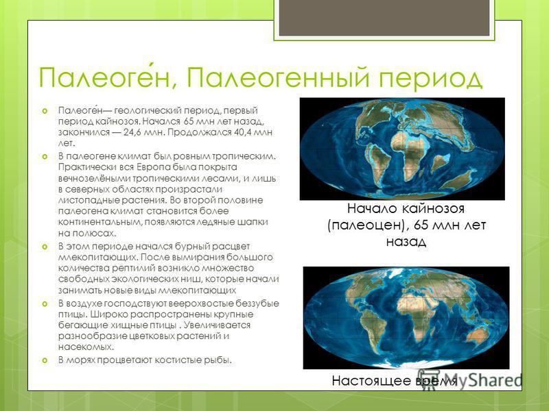 Палеоген, Палеогенный период Палеоген геологический период, первый период кайнозоя. Начался 65 млн лет назад, закончился 24,6 млн. Продолжался 40,4 млн лет. В палеогене климат был ровным тропическим. Практически вся Европа была покрыта вечнозелёными