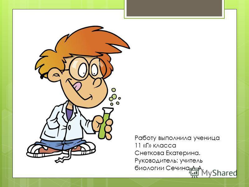 Работу выполнила ученица 11 «Г» класса Снеткова Екатерина. Руководитель: учитель биологии Сечина Л.А.