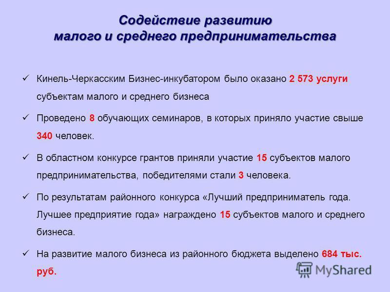 Содействие развитию малого и среднего предпринимательства Кинель-Черкасским Бизнес-инкубатором было оказано 2 573 услуги субъектам малого и среднего бизнеса Проведено 8 обучающих семинаров, в которых приняло участие свыше 340 человек. В областном кон